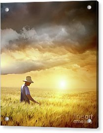 Farmer Checking His Crop Of Wheat  Acrylic Print by Sandra Cunningham