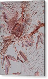 Feather Acrylic Print by Iris Gill