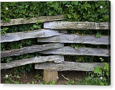 Acrylic Print featuring the photograph Fence Weave by Bill Thomson