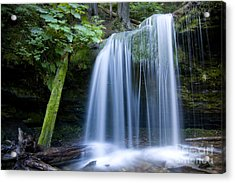 Fern Falls Acrylic Print by Idaho Scenic Images Linda Lantzy