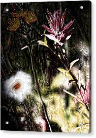 Field Of Feelings  Acrylic Print by Jerry Cordeiro