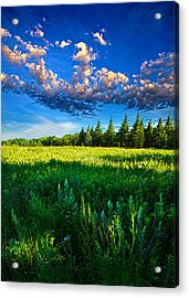 Fields And Dreams Acrylic Print by Phil Koch