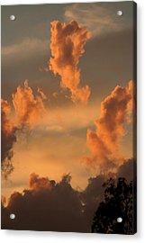 Fiery Floaters Acrylic Print by Louise Mingua