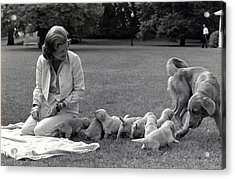 First Lady Betty Ford And The Familys Acrylic Print by Everett