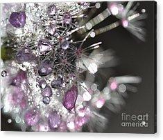 Acrylic Print featuring the photograph Fleur De Cristal by Sylvie Leandre