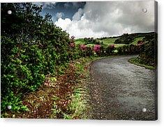 Flores Island - Azores Acrylic Print by Edgar Laureano
