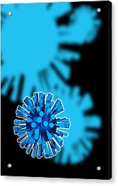 Flu Virus Particles, Artwork Acrylic Print by Victor Habbick Visions