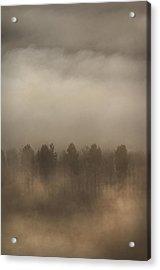 Fog Wall Acrylic Print by Andy Astbury
