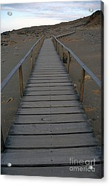 Footbridge On Volcanic Landscape Acrylic Print by Sami Sarkis