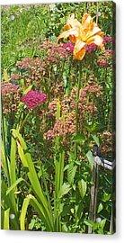 Garden Flowers  Acrylic Print by Thelma Harcum