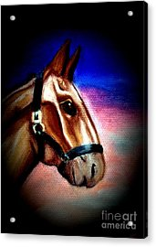 Giddy Up Acrylic Print