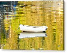 Golden Light Acrylic Print by Gordon Ripley