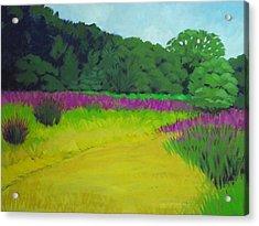 Golden  Meadow Acrylic Print by Robert Rohrich