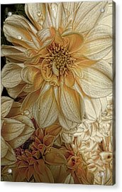 Golden Summer  Acrylic Print by Julie Williams