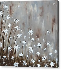 Gossamer Field Acrylic Print by Holly Donohoe