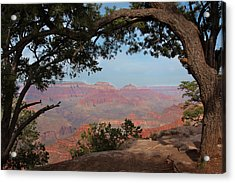 Grand Canyon Acrylic Print by Olga Vlasenko
