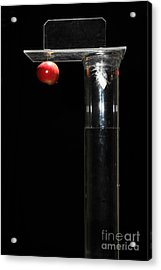 Gravity Comparison Acrylic Print by Ted Kinsman