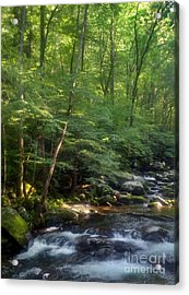 Great Smoky Mountains Acrylic Print by Janice Spivey