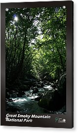 Great Smoky Mountains Np 007 Acrylic Print by Charles Fox
