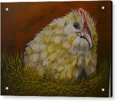 Acrylic Print featuring the painting Hector by Marlyn Boyd