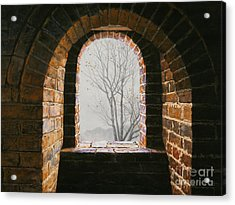 Here Now Acrylic Print by Lynette Cook