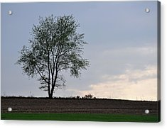 Horizon In April Acrylic Print by JAMART Photography