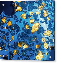 Imilac Meteorite Sample Acrylic Print by Detlev Van Ravenswaay