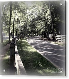 In My Dream The Road Less Traveled Acrylic Print by Nancy Dole McGuigan