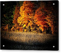 Indiana Autumn Acrylic Print by Michael L Kimble