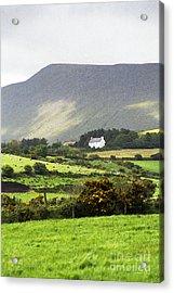 Irish Farm - Dingle Peninsula  Acrylic Print by Gordon Wood