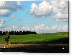 Israel's Countryside Acrylic Print by Gal Ashkenazi