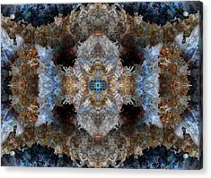 Kaleidoscope Acrylic Print by Christopher Gaston