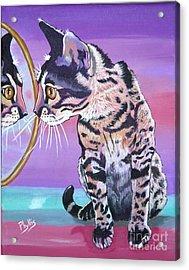 Kitten Image Acrylic Print by Phyllis Kaltenbach
