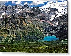 Lake O'hara Acrylic Print by Steve Harrington