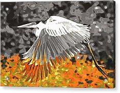 Leaden Wings Acrylic Print by Branko Jovanovic
