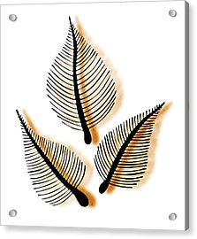 Leaves Acrylic Print by Frank Tschakert