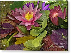 Acrylic Print featuring the photograph Lilies No. 33 by Anne Klar
