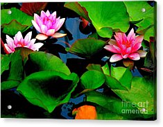 Lilly Abstract Acrylic Print