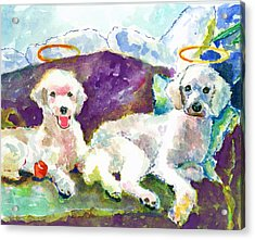 Little Angels Poodles Acrylic Print by Marsden Burnell