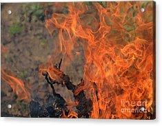 Log Fire And Flames Acrylic Print by Sami Sarkis