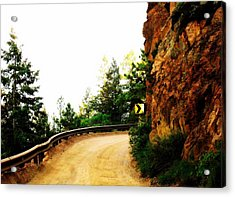 Acrylic Print featuring the photograph Lower Gold Camp Road  by Clarice  Lakota