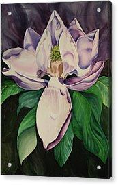 Magnolia Acrylic Print by Teresa Beyer