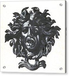 Medusa Head Acrylic Print by Photo Researchers