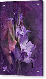 Melancholia Acrylic Print by Richard Cummings