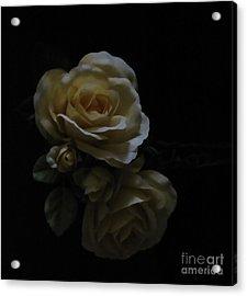 Midnight Roses Acrylic Print by Cedric Hampton