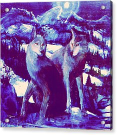 Midnight Wolves Acrylic Print