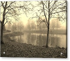 Mist Acrylic Print by Amy Norden