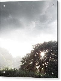 Morning Sunlight  Acrylic Print by Les Cunliffe