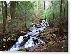 Acrylic Print featuring the photograph Mountain Stream by Paul Mashburn
