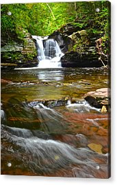 Murray Reynolds Acrylic Print by Frozen in Time Fine Art Photography